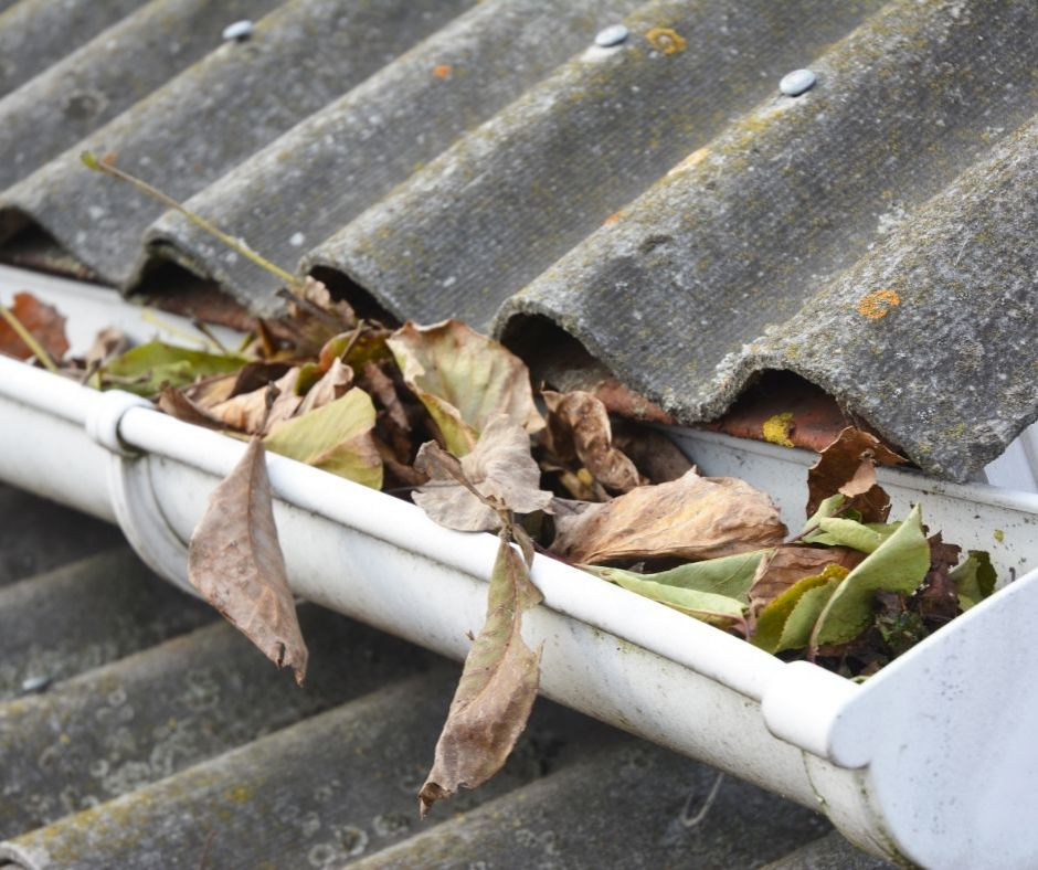 Gutter cleaning in Frankston