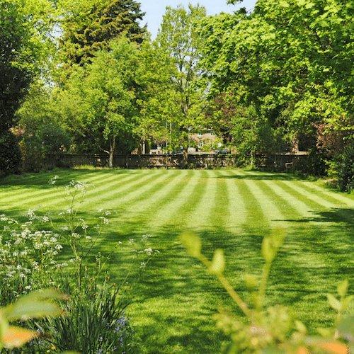 Perfect lawn mowing job in Mornington