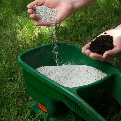 Organic Lawn Fertiliser Service in Frankston