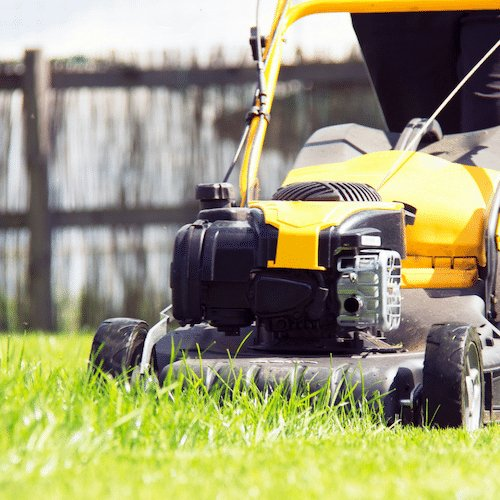 Lawn Mowing Mornington Rosebud 1